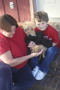 Donna Arnold is looking for good homes for the puppies she rescued.