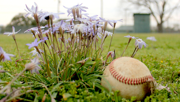Flowers and an old baseball dot the outfield at Knox Field where young baseball players once roamed. (Photo/Ryan McCollough)