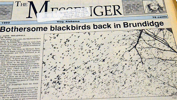 On this day 25 years ago, a swarm of blackbirds caused problems for Brundidge residents, as pictured on the front page of The Messenger that day.